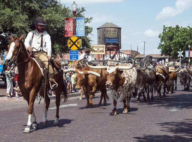 cowboys-720791_1280